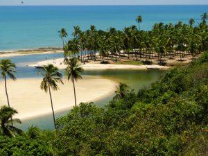 Jequiá da Praia